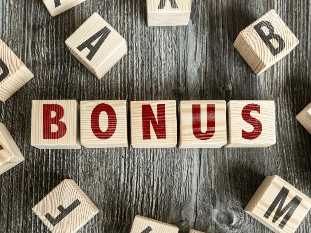 bonus ristrutturazione